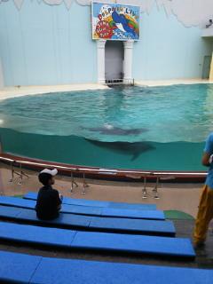 水族館に行こう♪_f0039541_17384955.jpg