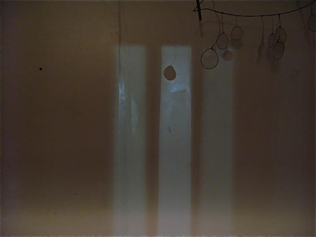 壁の模様_d0101846_8292610.jpg