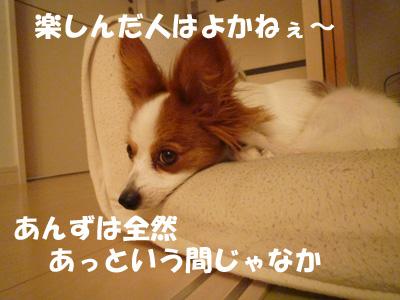 b0170863_23481666.jpg