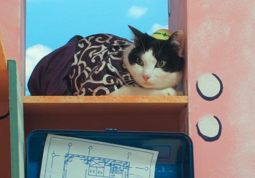 BeeTV☆猫田工務店☆_d0126264_16564248.jpg