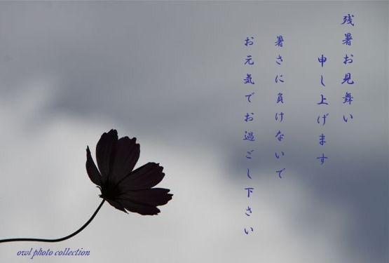 b0074469_19555259.jpg