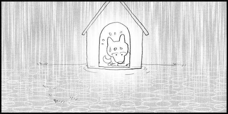 大雨だぁ〜〜〜(汗)(汗)(汗)_f0119369_11422471.jpg