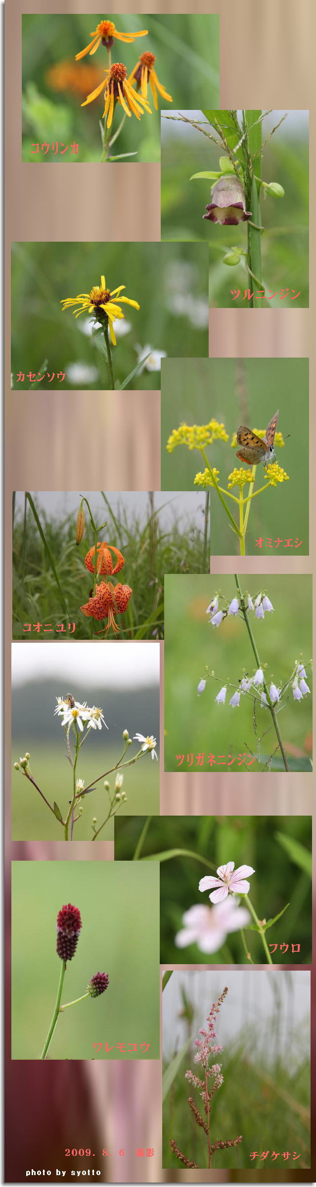 f0164592_1821367.jpg