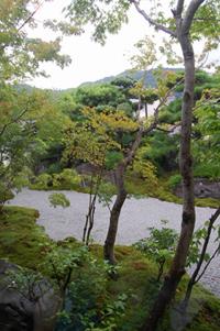 京都嵐山の和スイーツ_a0115906_14214682.jpg