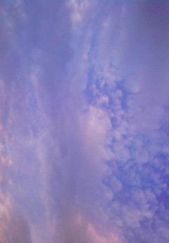 f0166735_9552048.jpg