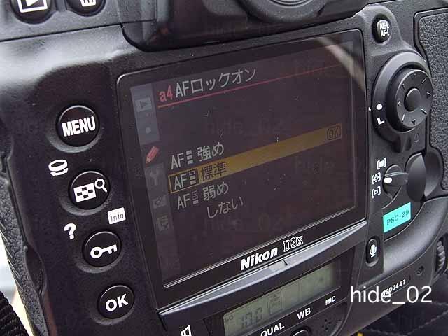 f0174521_3525683.jpg