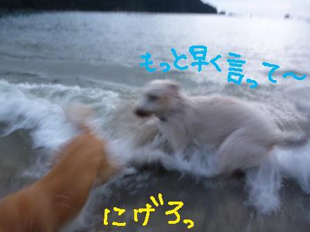 f0176830_18132035.jpg