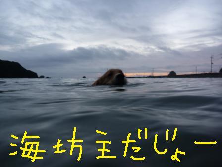 f0176830_18234358.jpg