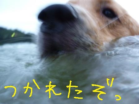 f0176830_1833146.jpg