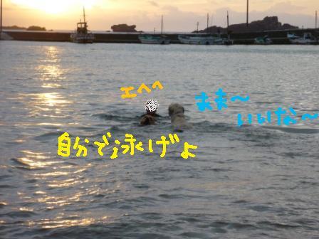 f0176830_1841365.jpg