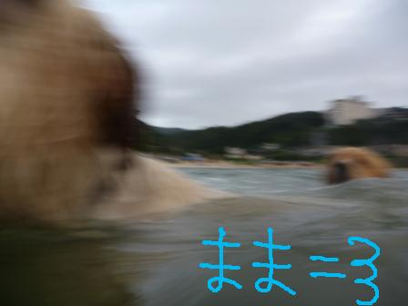 f0176830_18491076.jpg