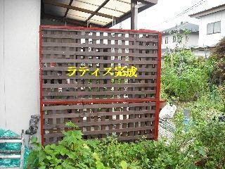 屋根塗装・ラティス塗装・玄関ドア塗装_f0031037_2111841.jpg