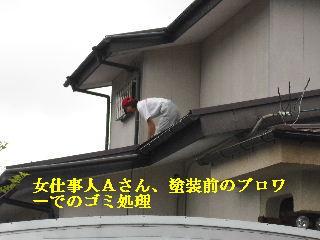 屋根塗装・ラティス塗装・玄関ドア塗装_f0031037_21133572.jpg