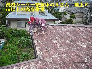 屋根塗装・ラティス塗装・玄関ドア塗装_f0031037_21134361.jpg