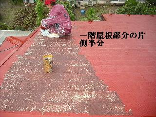 屋根塗装・ラティス塗装・玄関ドア塗装_f0031037_21142171.jpg