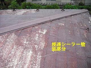 屋根塗装・ラティス塗装・玄関ドア塗装_f0031037_21201192.jpg