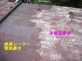 屋根塗装・ラティス塗装・玄関ドア塗装_f0031037_2120313.jpg
