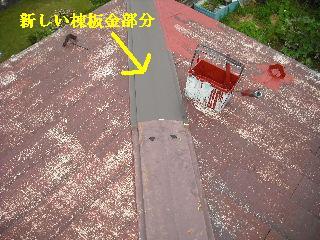 屋根塗装・ラティス塗装・玄関ドア塗装_f0031037_2122477.jpg