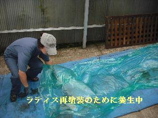 屋根塗装・ラティス塗装・玄関ドア塗装_f0031037_2194438.jpg