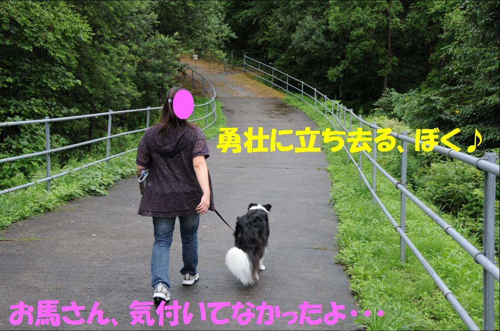 c0147241_22154567.jpg