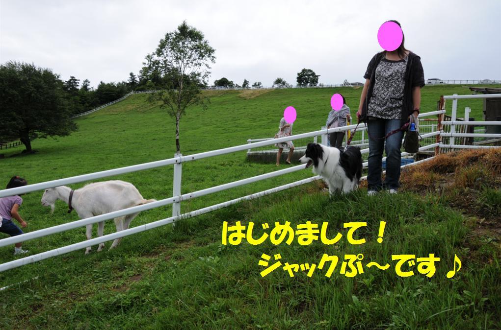 c0147241_22155141.jpg
