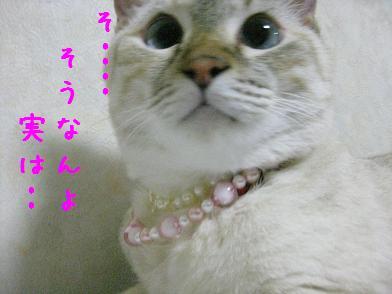 b0151748_1304973.jpg