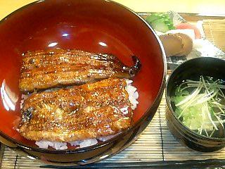 鰻の蒲焼き_e0159969_17283325.jpg
