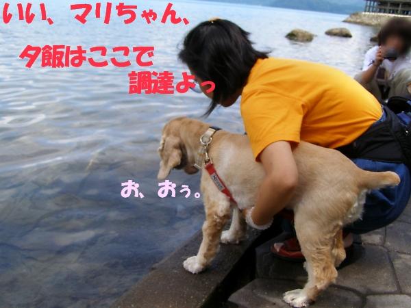 b0067012_129937.jpg