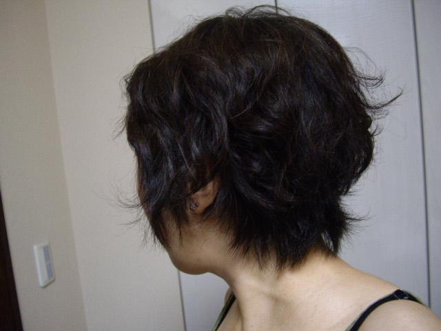 髪の毛&眉_f0113630_9163145.jpg
