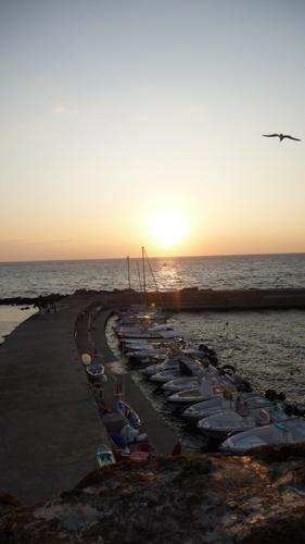 毎年恒例、ガッリーポリの夕陽_f0106597_2248301.jpg