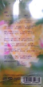 酒井法子 全シングル &BEST_b0033699_1739940.jpg