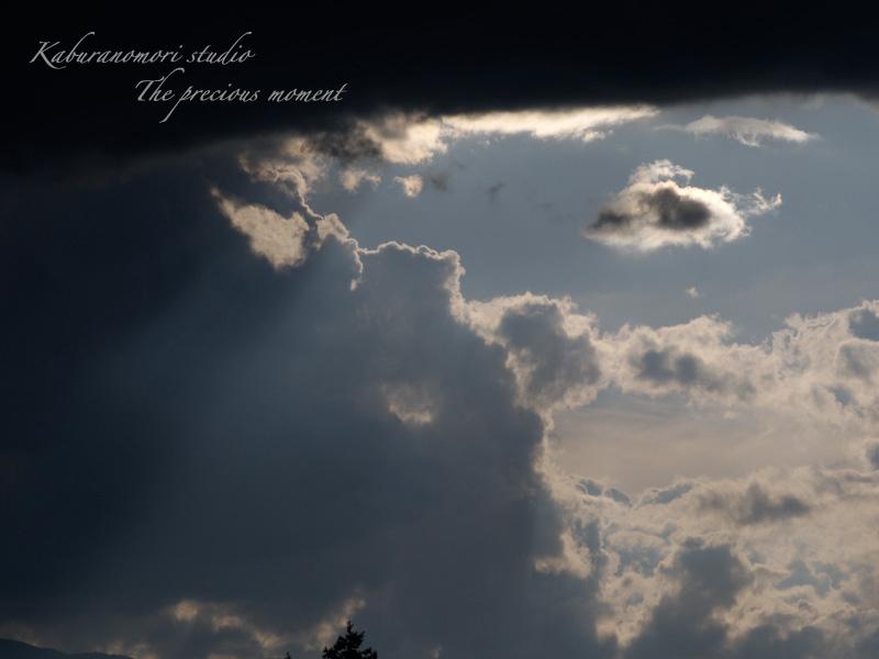 09/8/11     台風が過ぎた日の空_c0137403_2029133.jpg