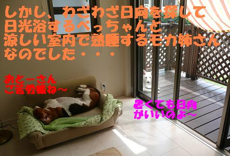 f0121712_15352977.jpg