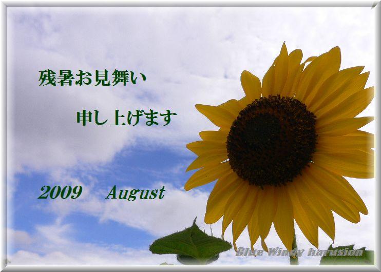 b0105515_2242674.jpg