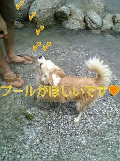 夏休み・2日目_f0148927_7322975.jpg