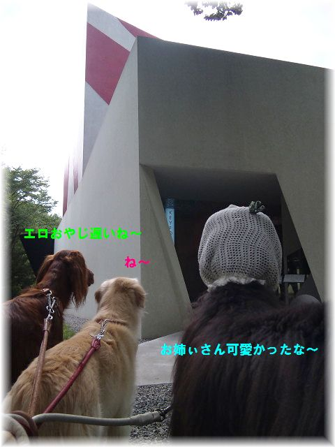 c0059331_349199.jpg