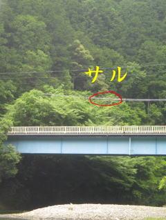 【カヤック日記】北山川にてフィッシング!_c0113733_1384346.jpg