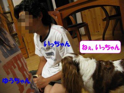 b0185323_14321237.jpg