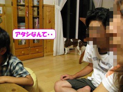 b0185323_14403180.jpg
