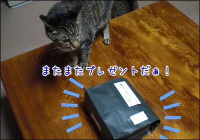 d0139352_0151516.jpg