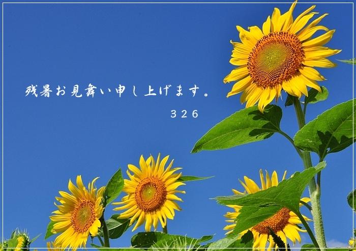 e0013365_730473.jpg
