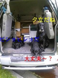 フリマ_f0148927_1922840.jpg