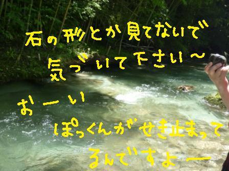 f0176830_11501279.jpg
