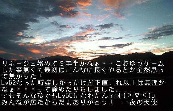 f0140642_2331561.jpg