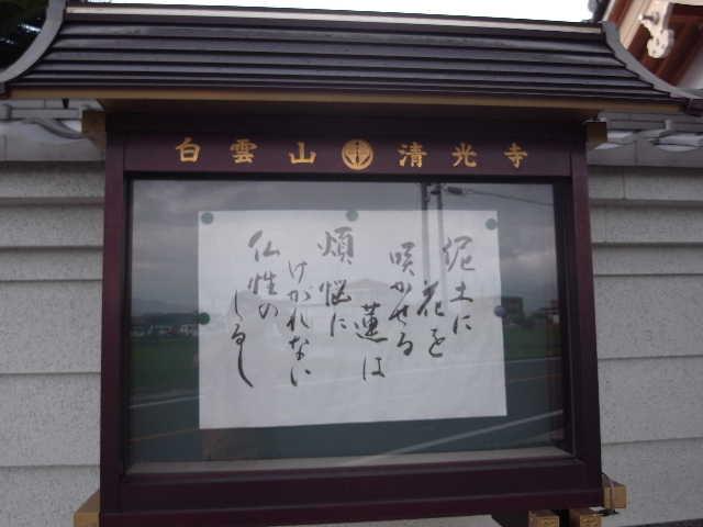 清光寺・父の墓参り_c0011649_23301126.jpg