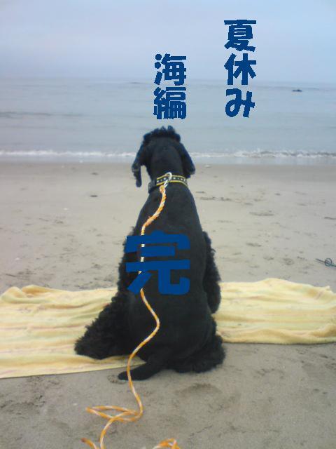 夏休みアルバム「海編♪」_f0096569_043738.jpg