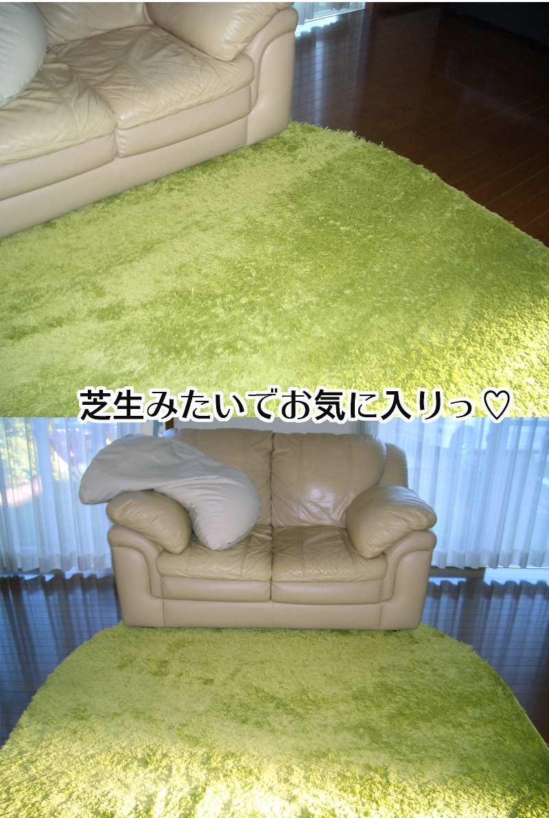 芝生カーペット♡♡♡_f0119369_17372745.jpg