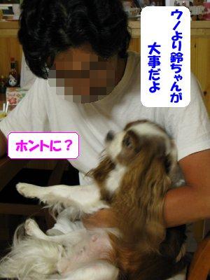 b0185323_23292792.jpg