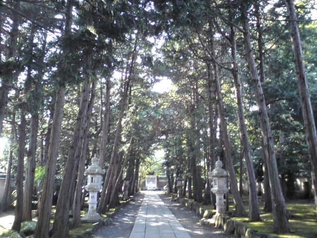 喜多見寺社巡り_d0038951_39026.jpg