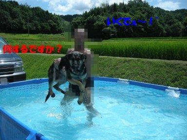 b0113663_8493874.jpg